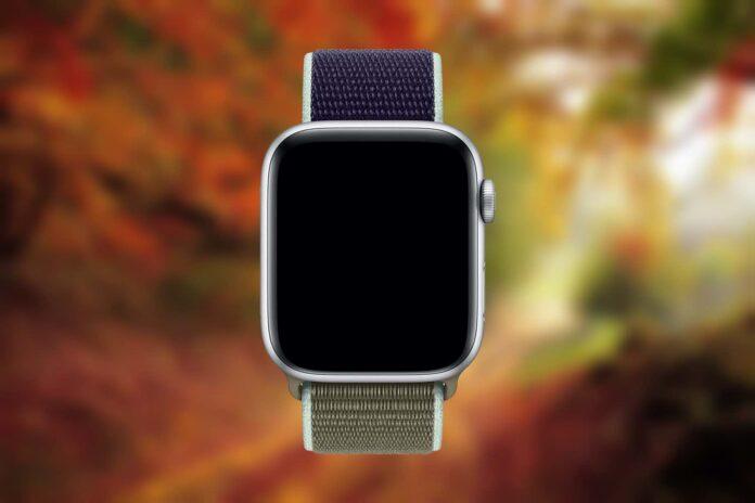 Apple Watch Band - Sport Loop (44mm)